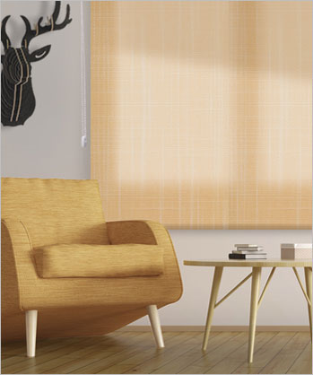 Translucent Roller Blinds